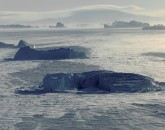 PA-1053-Groenland-Savissivik, icebergs