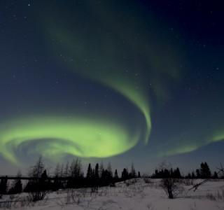 PA-2020-Canada, Manitoba, Baie d'Hudson, Parc National de Wapusk, aurore boréale